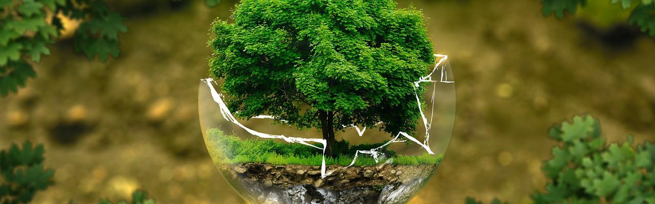 environmental-protection-326923_1280